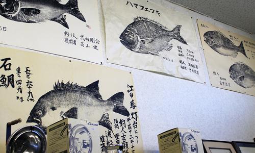 matsuo-fishing-hita-japan