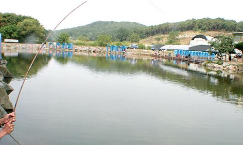 gimpo-fishing
