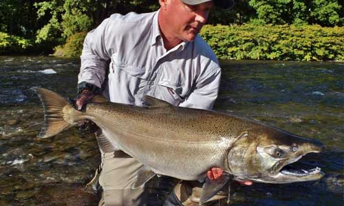 World record coho salmon river