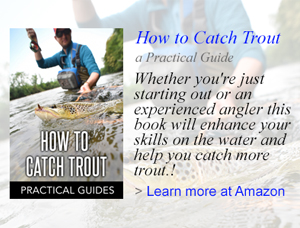 How to Catch Trout book